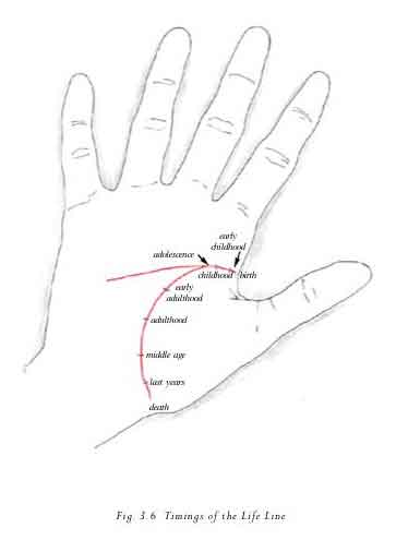 palmistry guide in urdu pdf